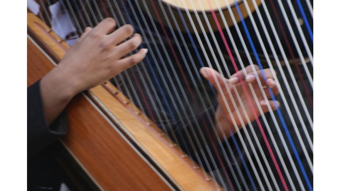 suonando l'arpa