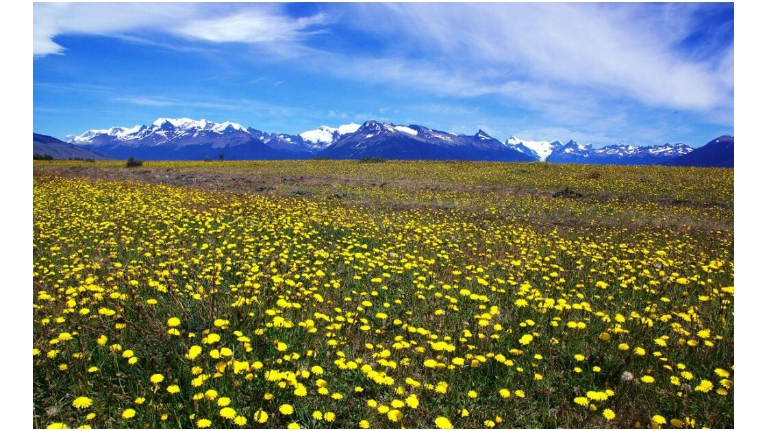 parc national des glaciers Nord