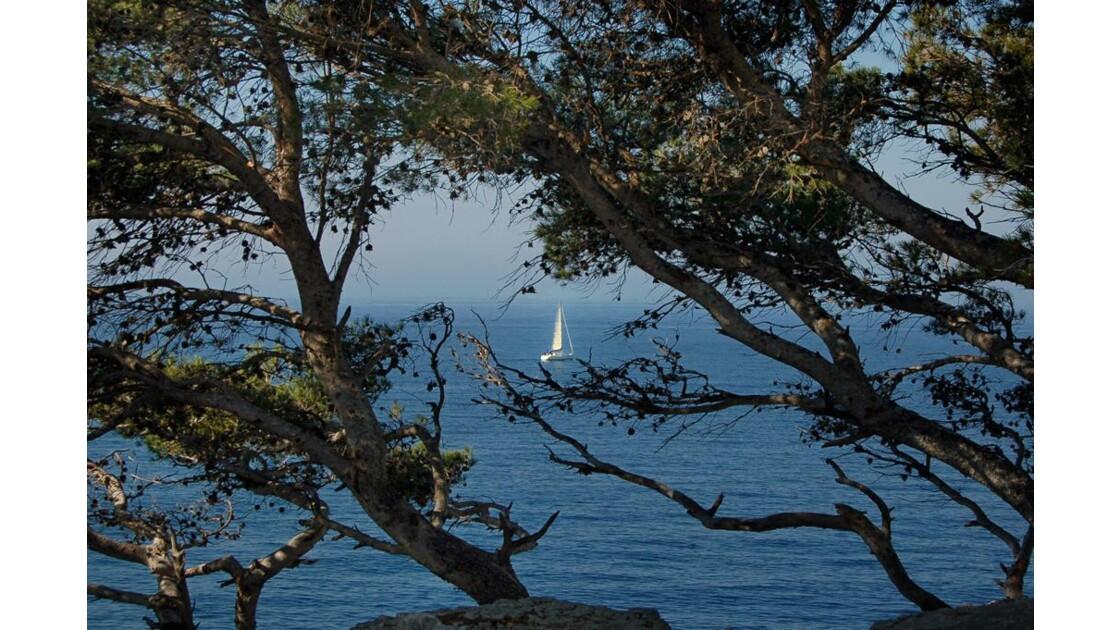 Les p'tits bateaux - Cassis (13)