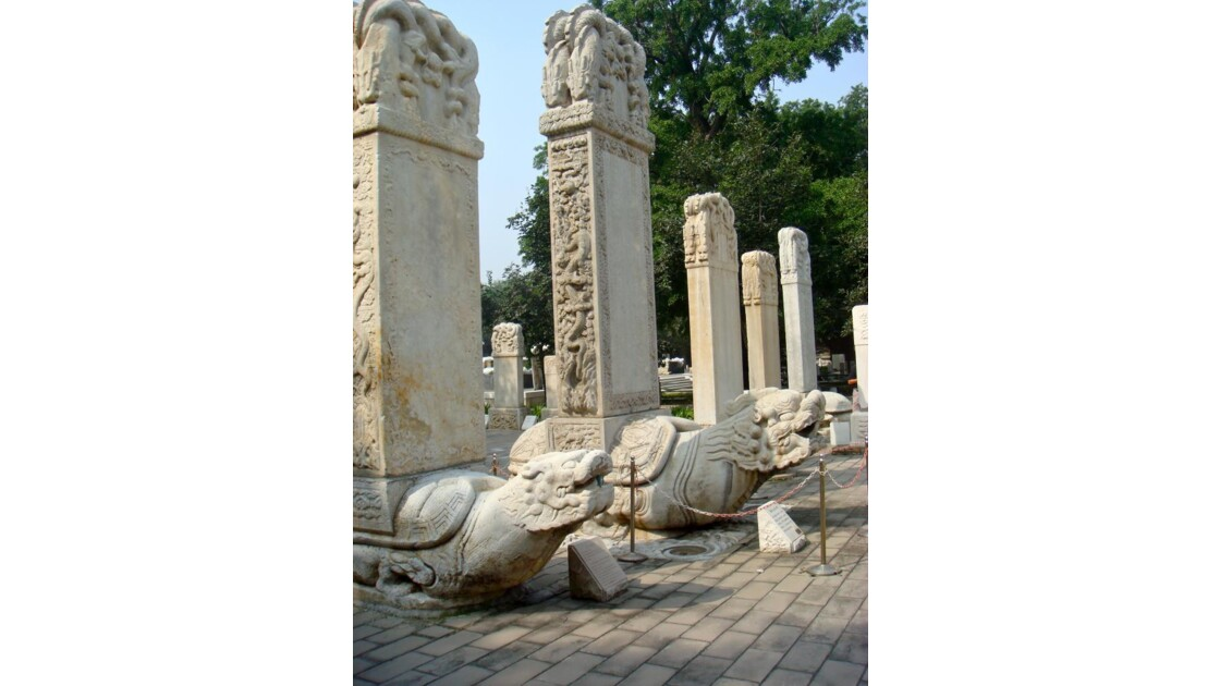 Stèles funéraires sur tortues-dragons