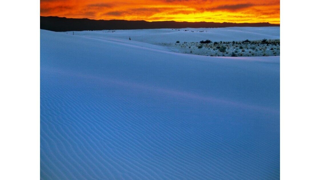 Nouveau Mexique : désert de White Sands