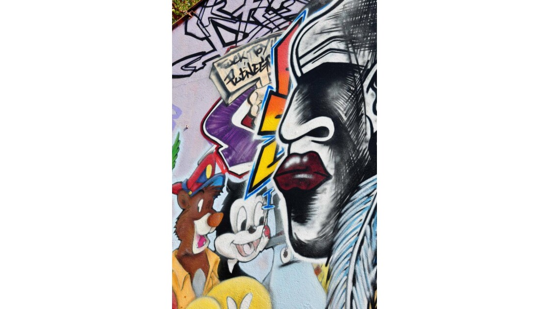 Graff 13