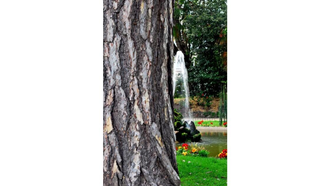 Manneken's tree-pis.!!!!!pg