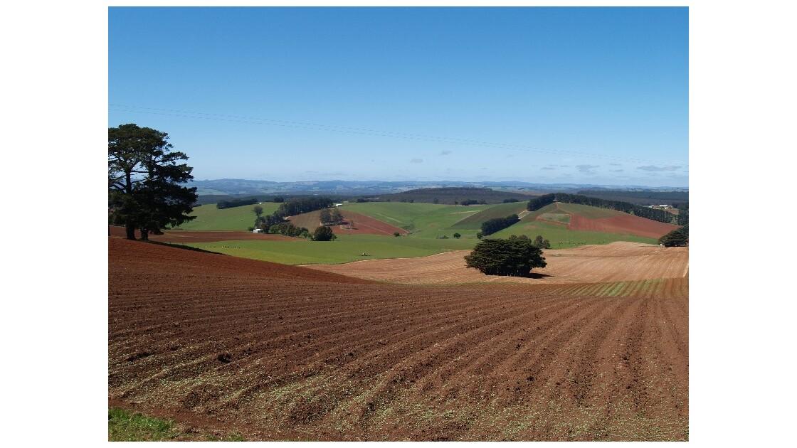 Paysage de Tasmanie