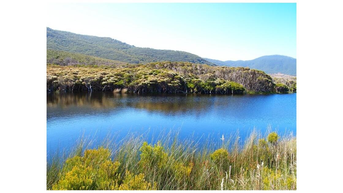 Wilson's promontory national park