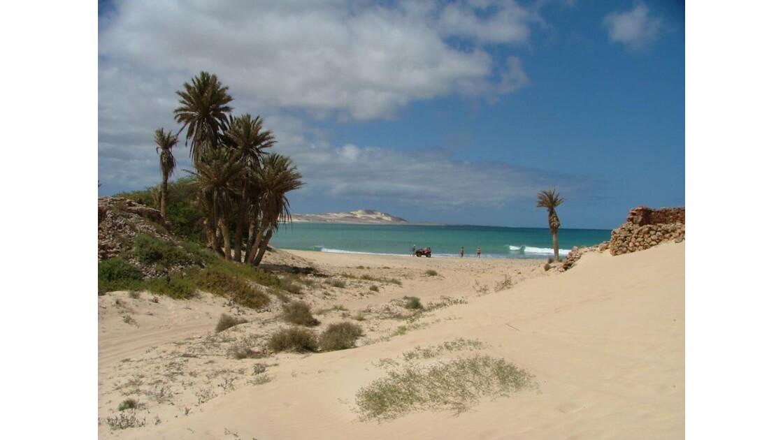 paysage de dunes