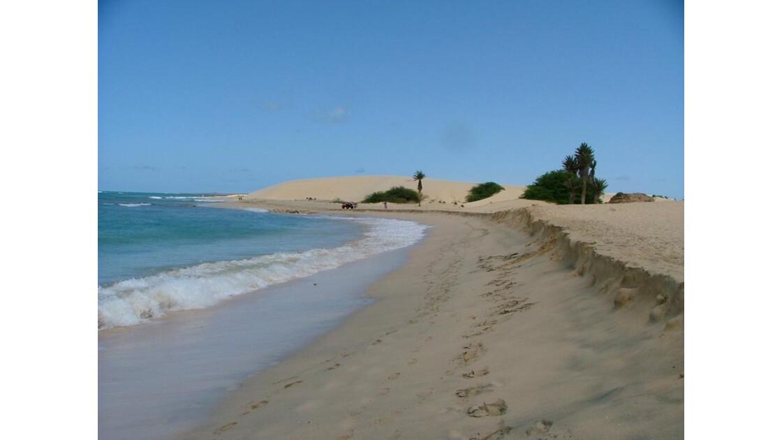 dunes bord d' océan