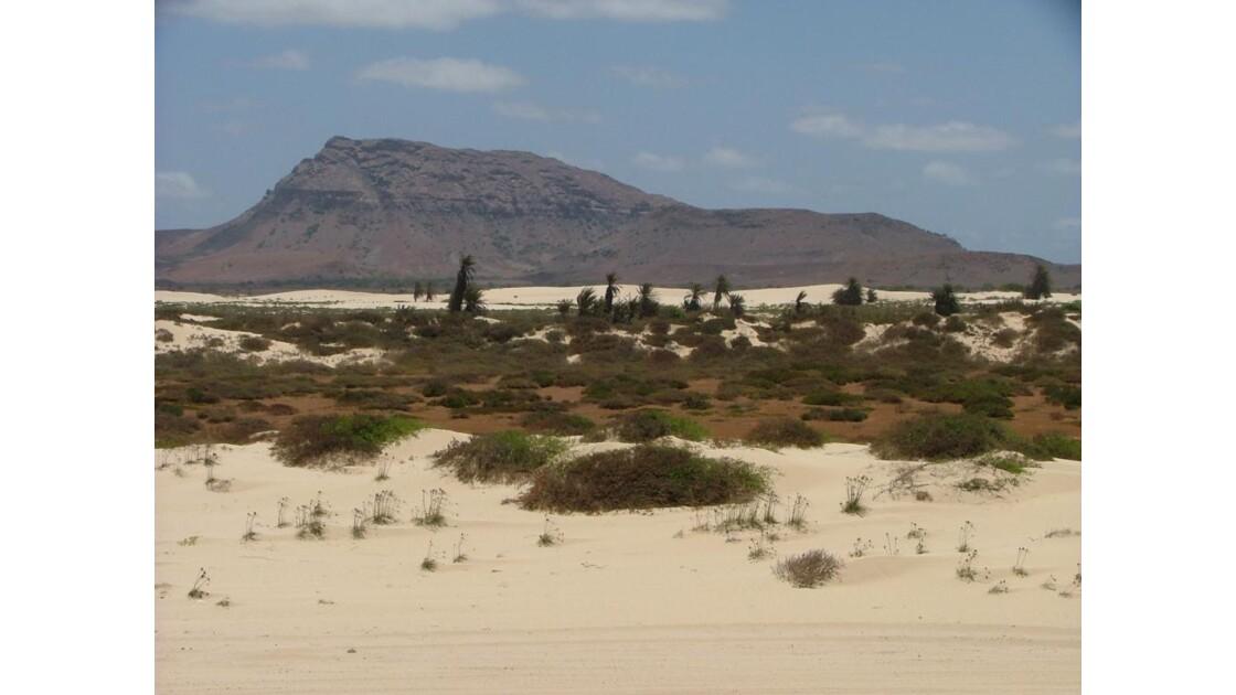paysage de dunes et de désert