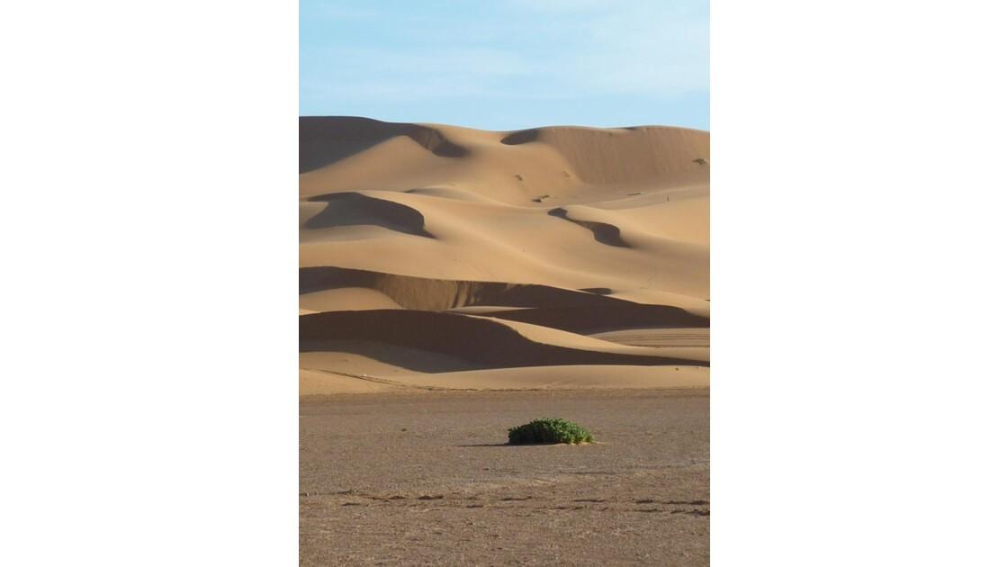 Dernier pas avant le Sahara