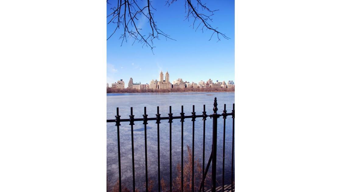 paysage depuis Central Park