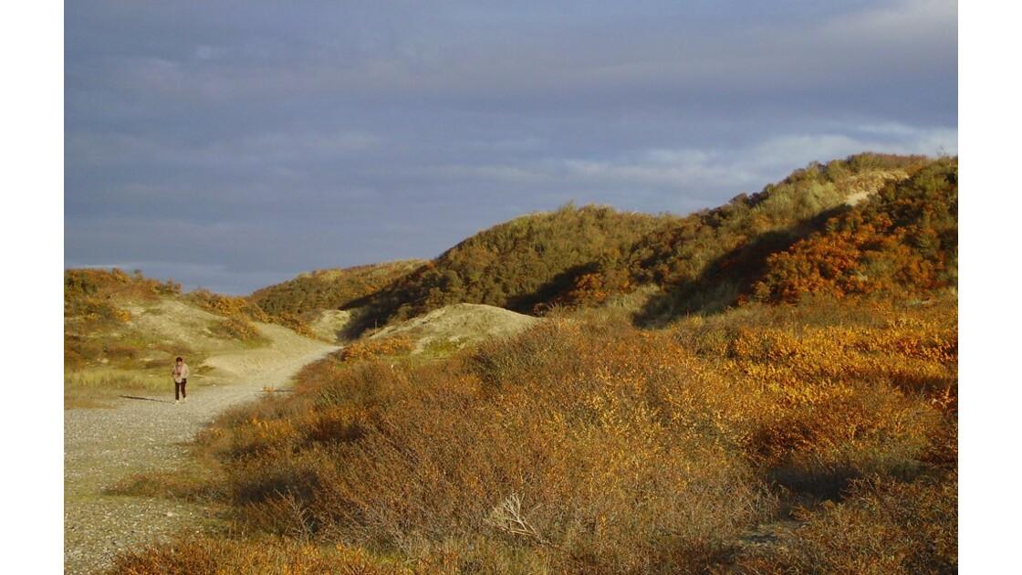 dunes en décembre