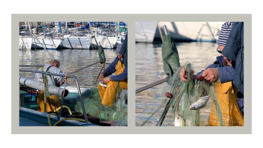 Pêcheurs Vieux-Port de Marseille