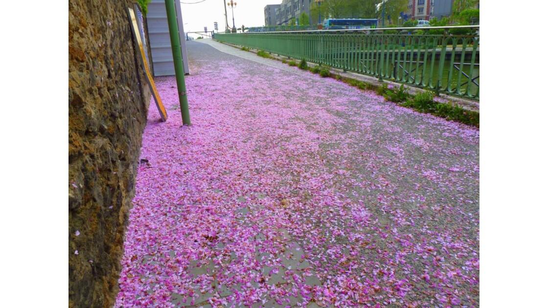 Dérouler le tapis rose