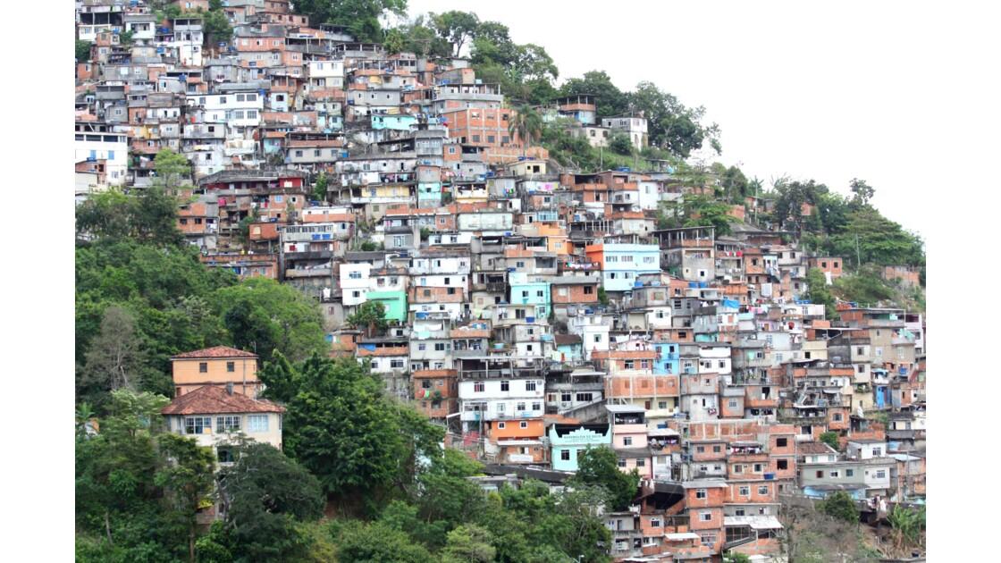 Rio Favella