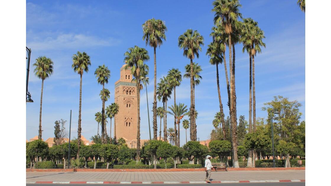 Marrakech: La Koutoubia  perle de la vieille ville , joyau dans un écrin de verdure