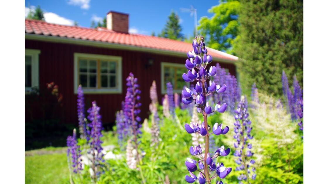 Räfsnäs, Suède