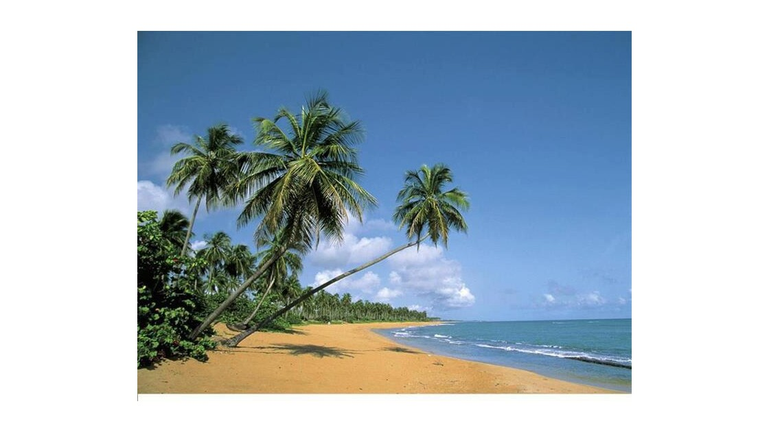 Island Beach Thailande