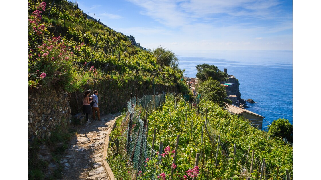 Cinque Terre, rando sur le sentier N.2 Vernazza/Monterosso al Mare