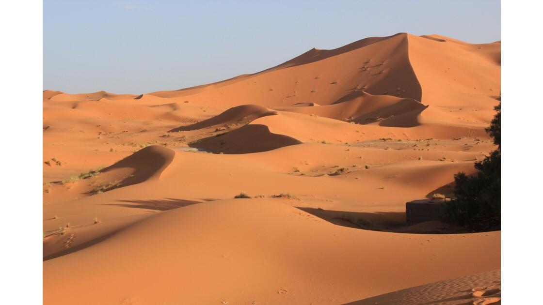 Les dunes de Merzouga connaissent un succés mérité .Toutes les agences