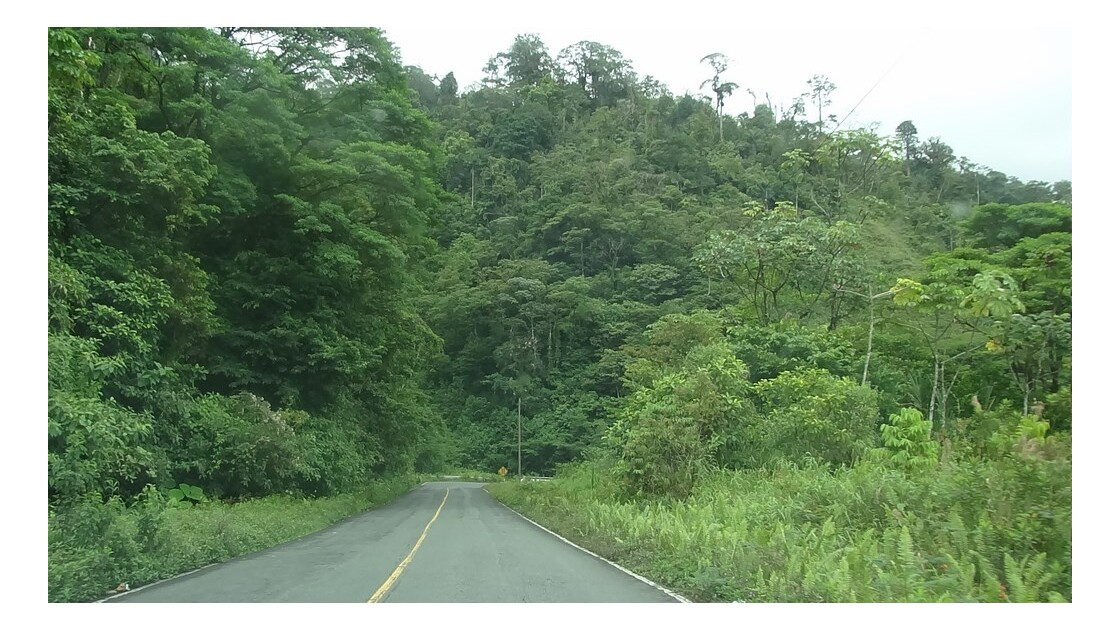 Panama Sur la route d'Almirante 1
