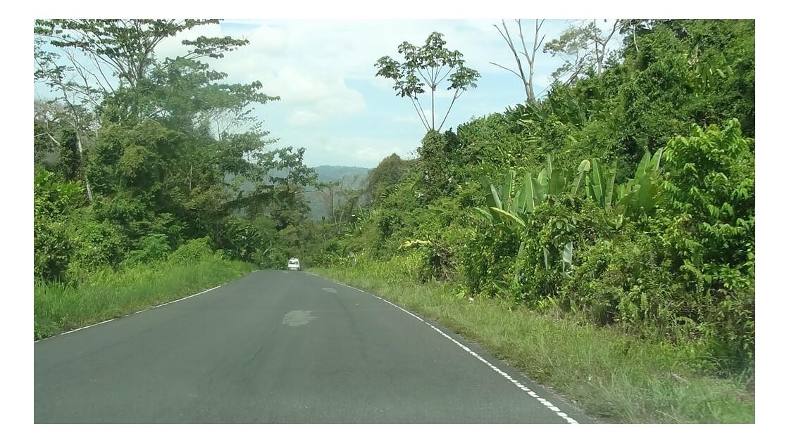 Panama Sur la route d'Almirante 2