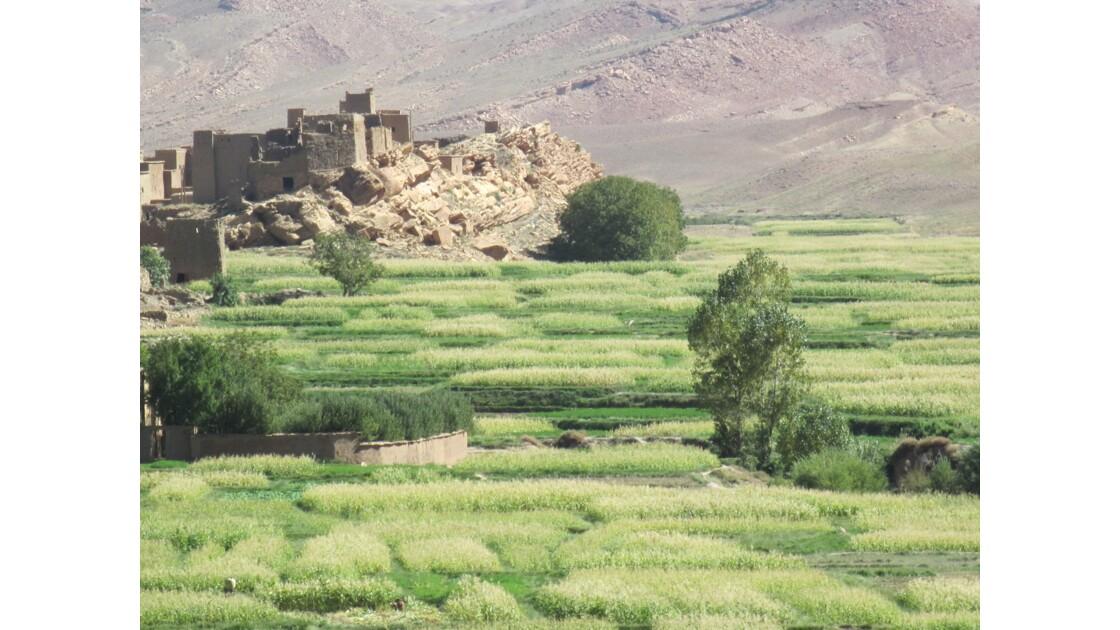 Tamtattouchte , dans le Haut-Atlas , se trouve en pays berbère de la tribu