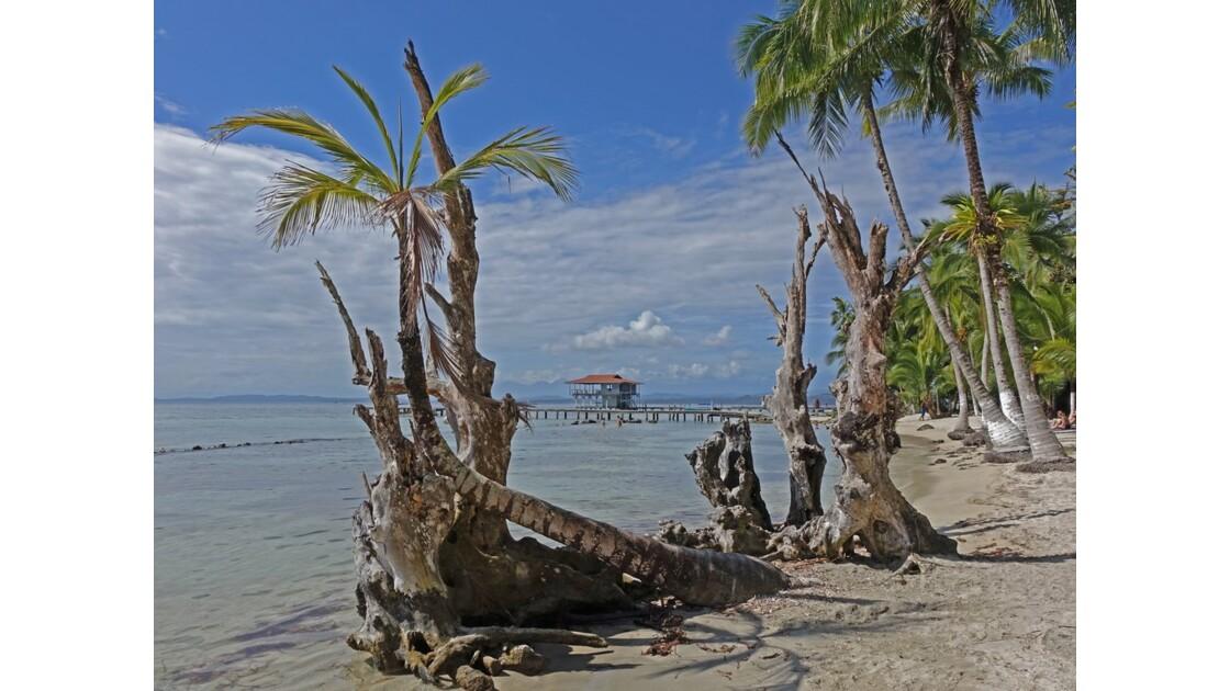 Panama Isla Carenero Playa Bucaneros 9