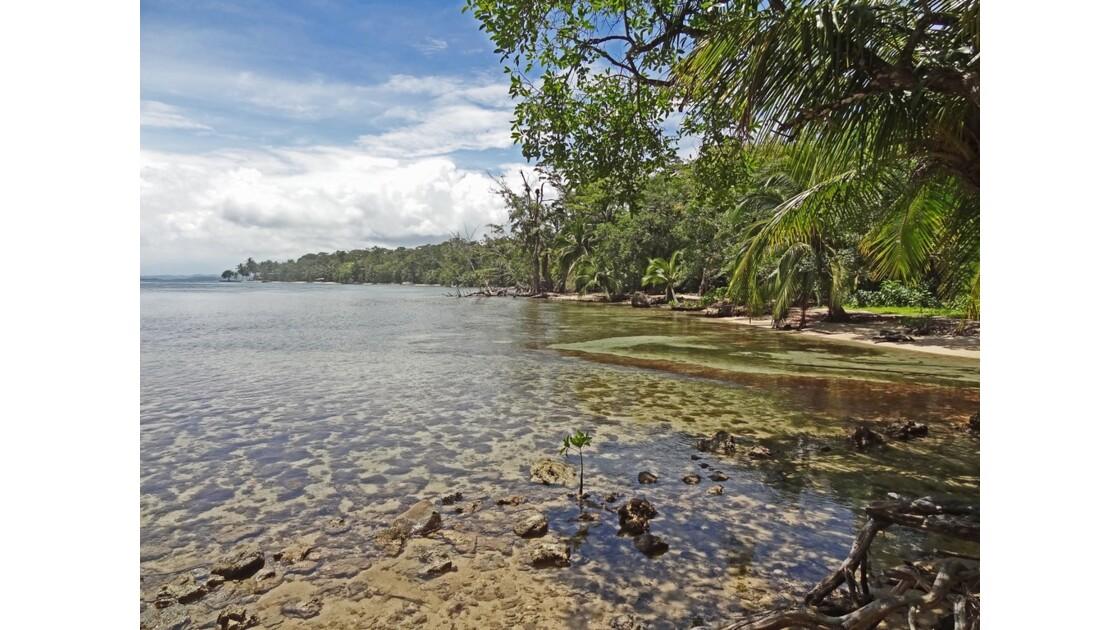 Panama Isla Carenero 2