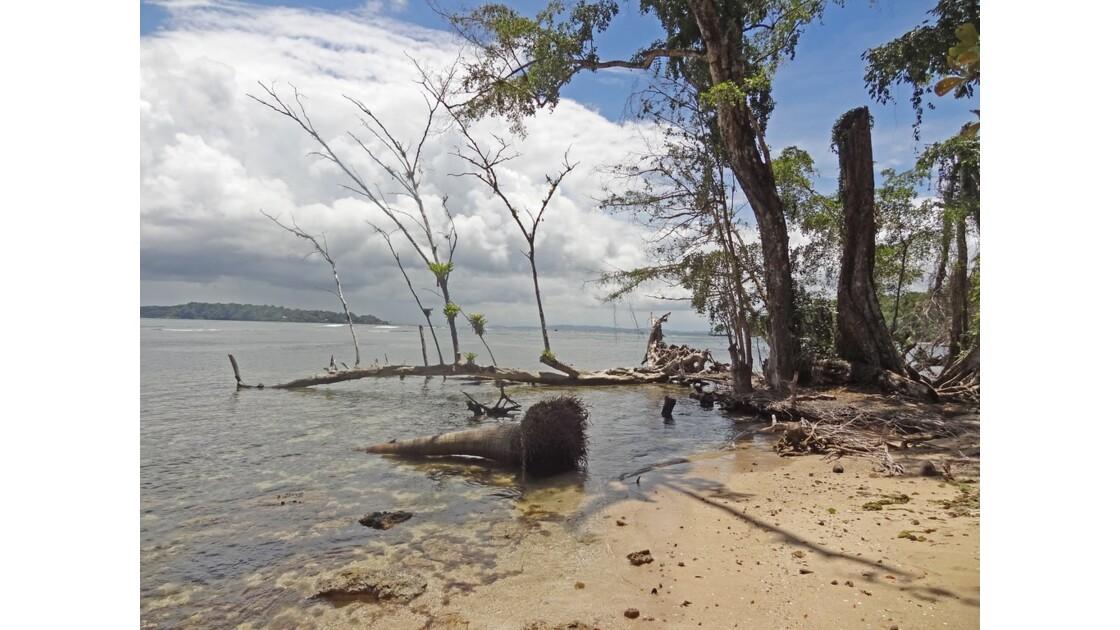 Panama Isla Carenero 3