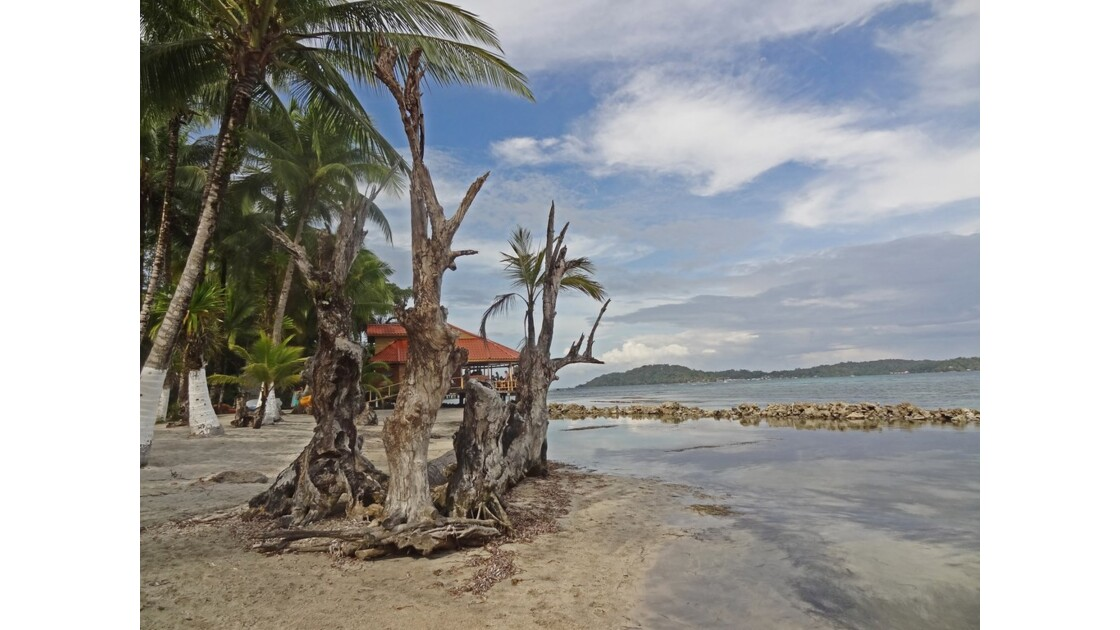 Panama Isla Carenero Playa Bucaneros 1