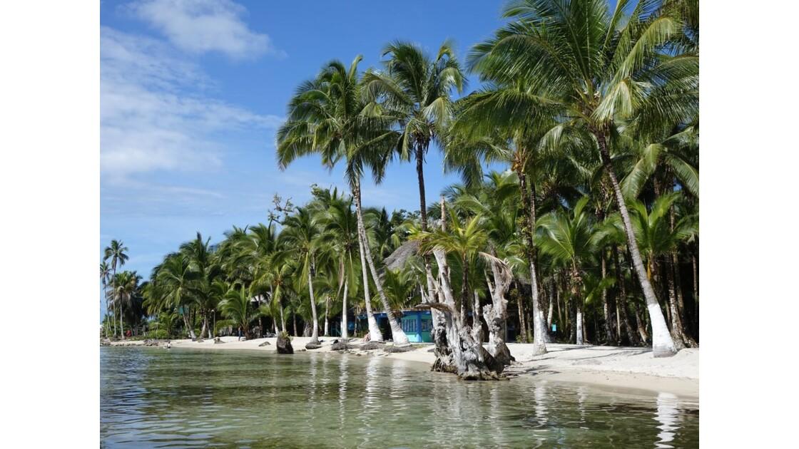 Panama Isla Carenero Playa Bucaneros 7