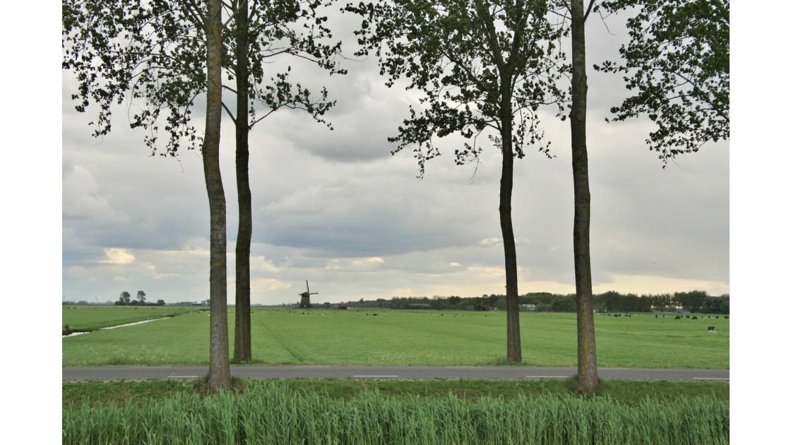 le moulin au loin