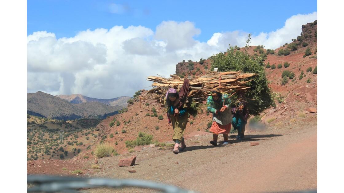 Chaque jour il faut aller glaner le bois dans la vallée de la Tessaout .C'est souvent
