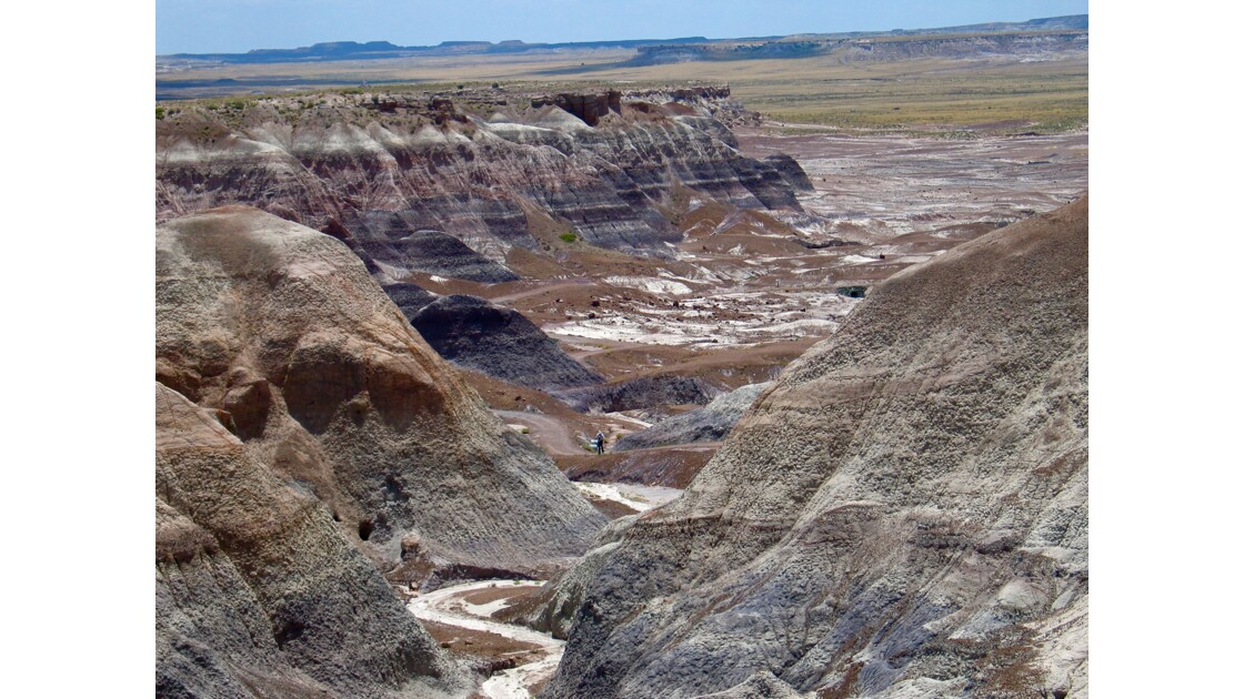 Painted Desert : Petrified Forest, Holbrook