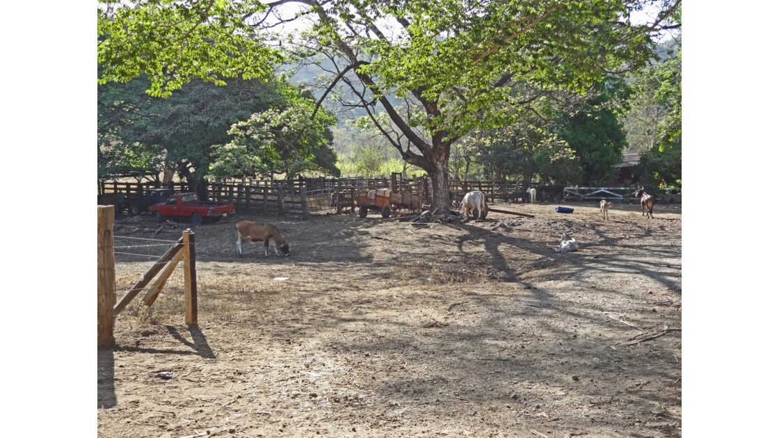 Costa Rica Ranch Autour de Liberia 4