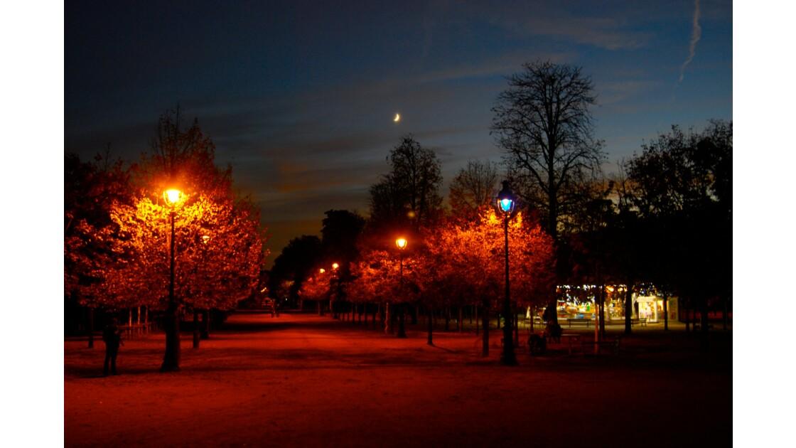 La nuit des Tuileries