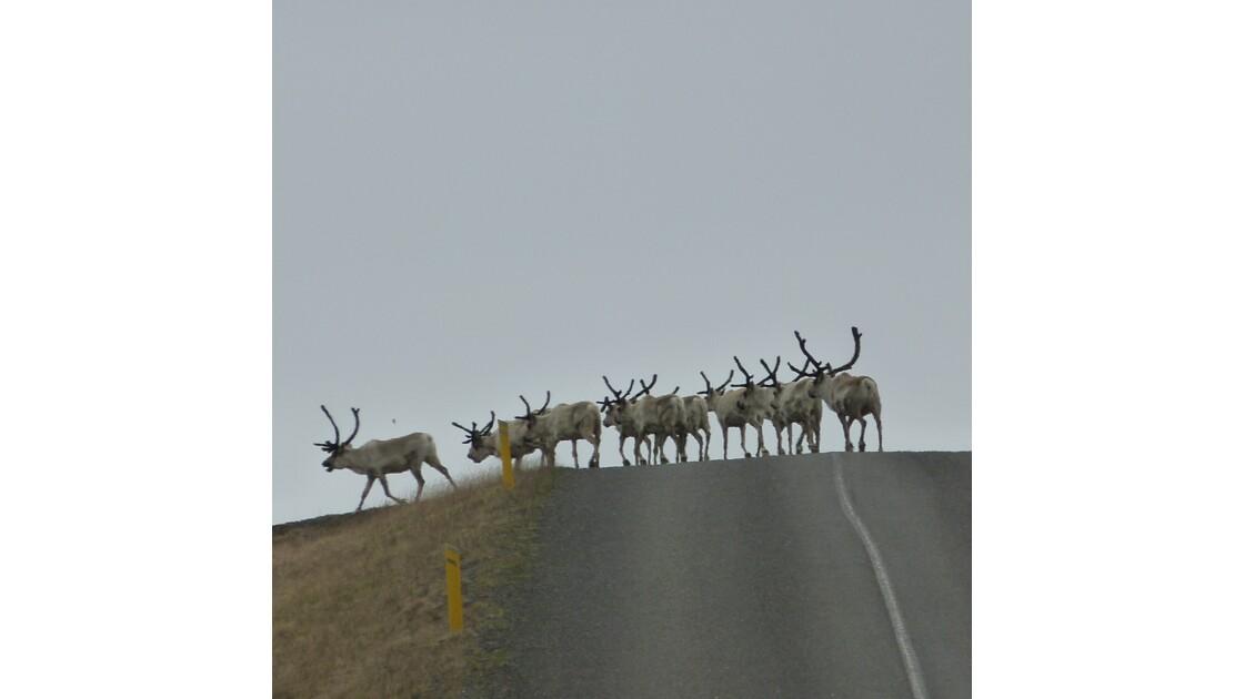 rennes sur la route