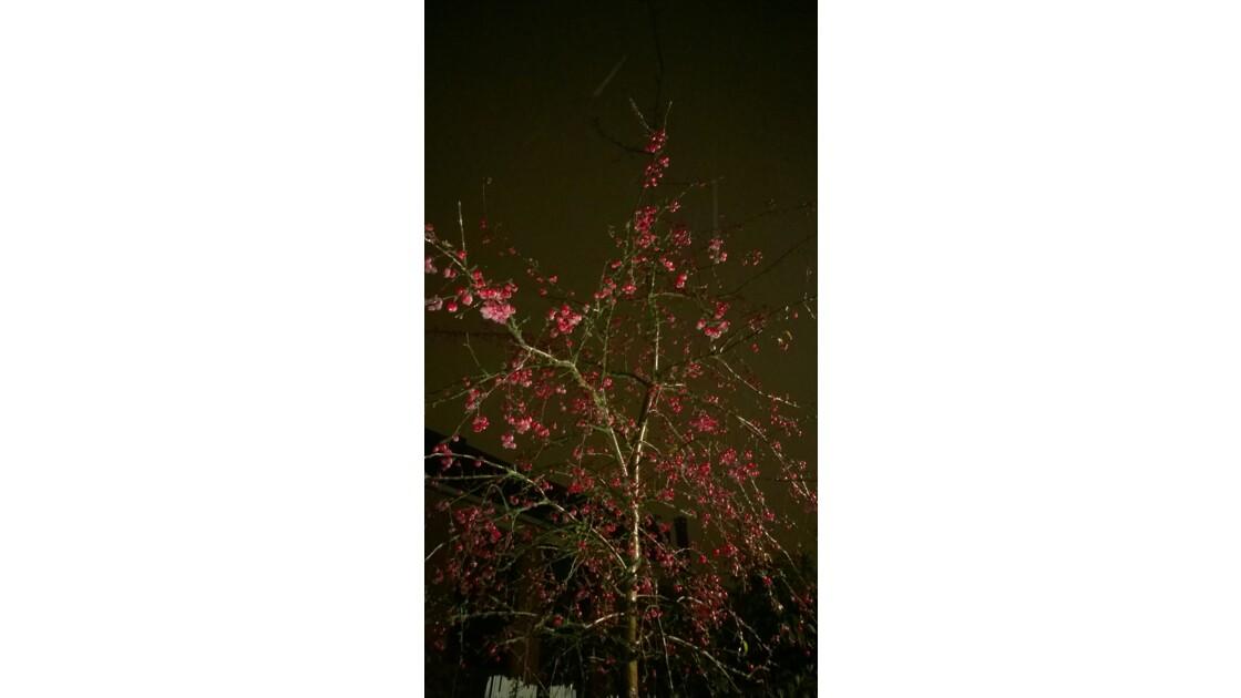 un soir d hiver