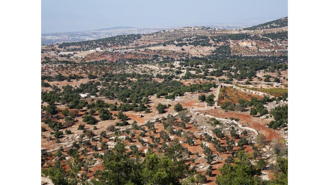 Jordanie Forteresse arabe d'Ajlun vallée du Jourdain 2