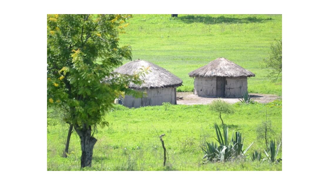 cases massai