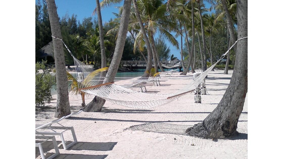 Plage de sable fin et blanc de Bora-Bora avec Hamac :)