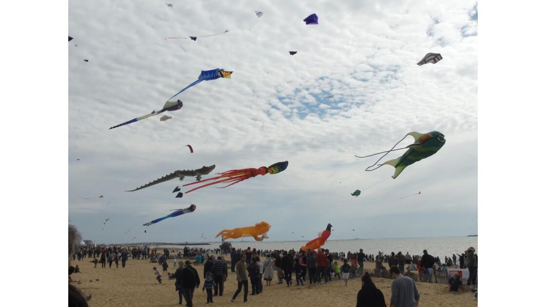 Festival du cerf volant et du vent