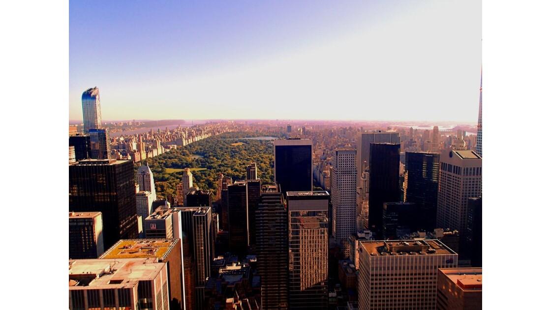 Central Park depuis le Rockefeller Center