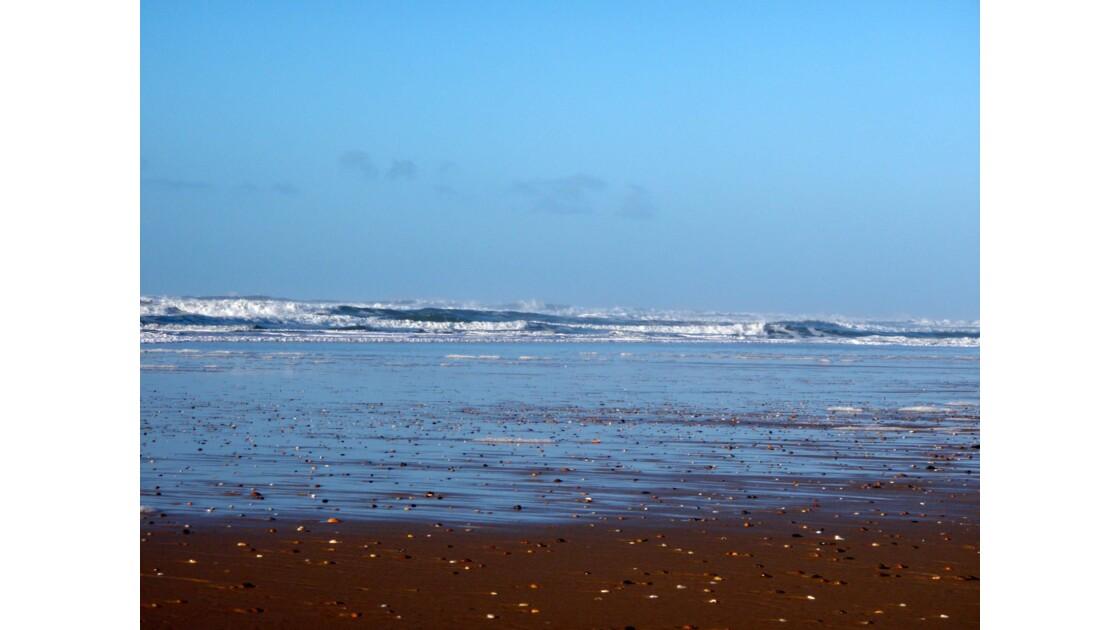 Le Porge Ocean
