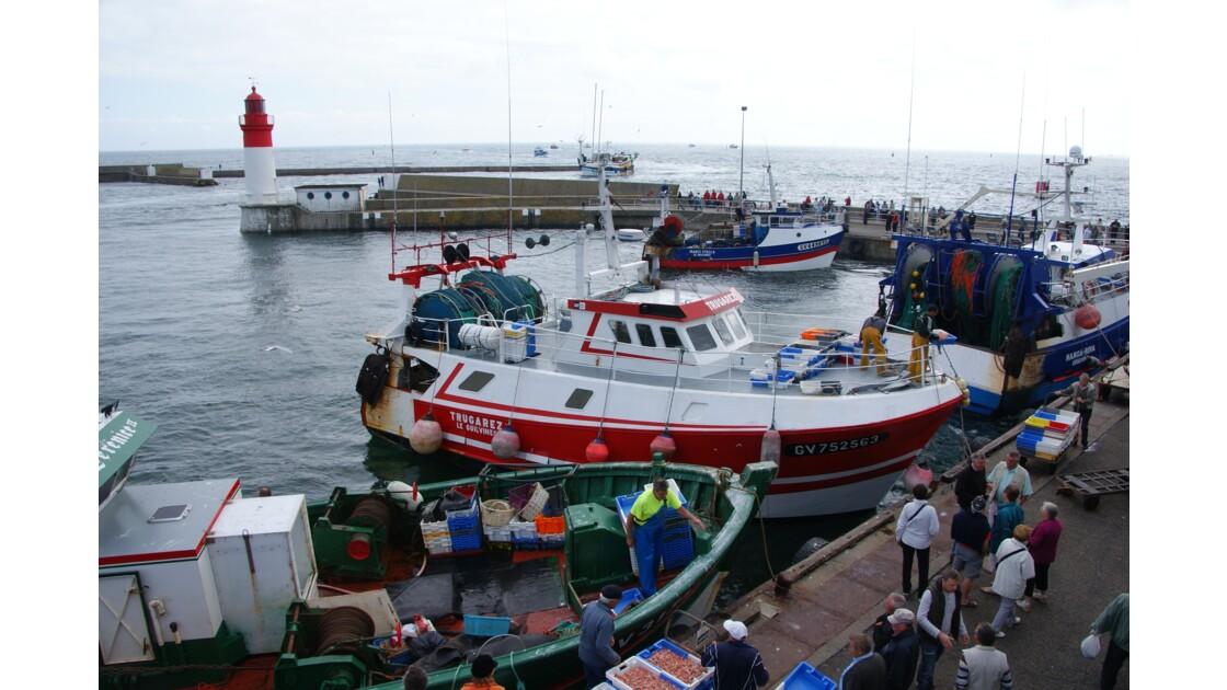 Retour des bateaux de pêche au port .