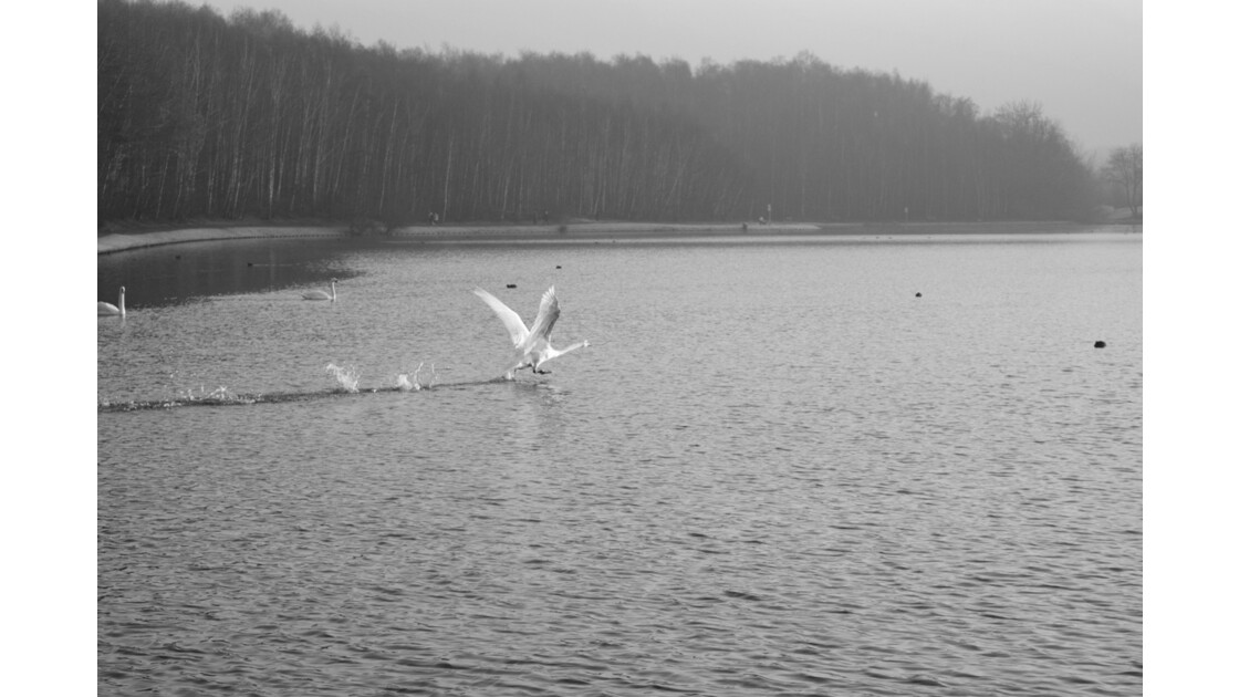 décollage au bord de l'eau
