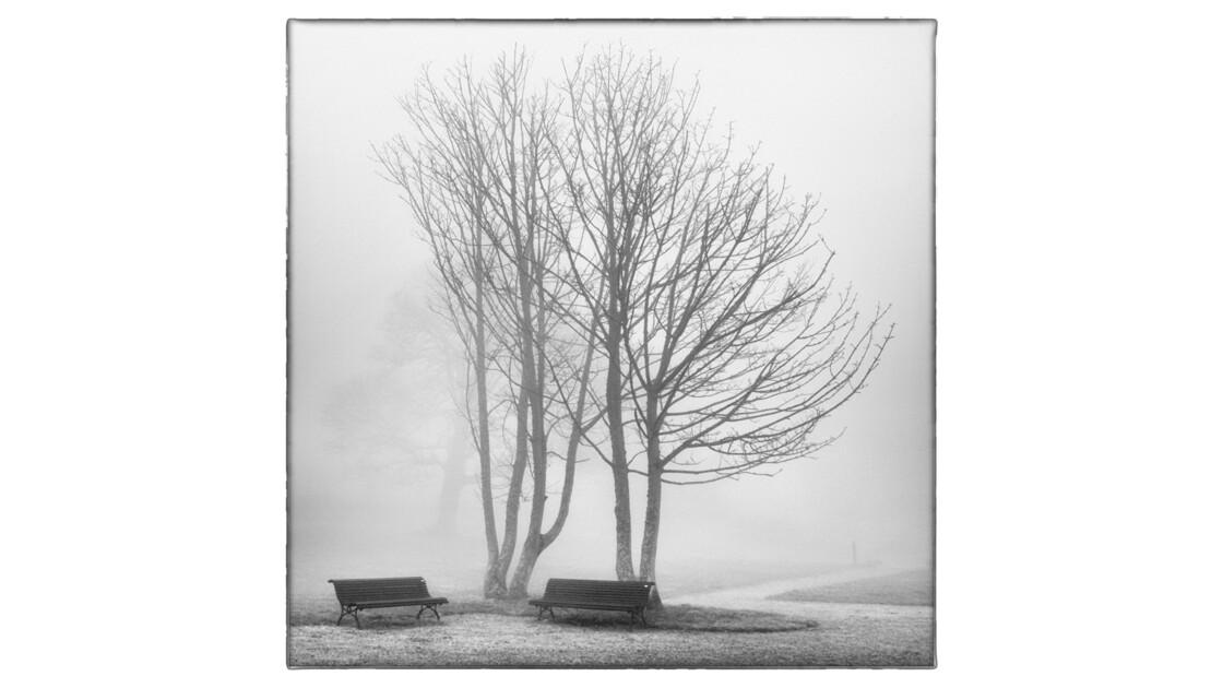 GEOjardin - Parc du Manoir d'Hainneville