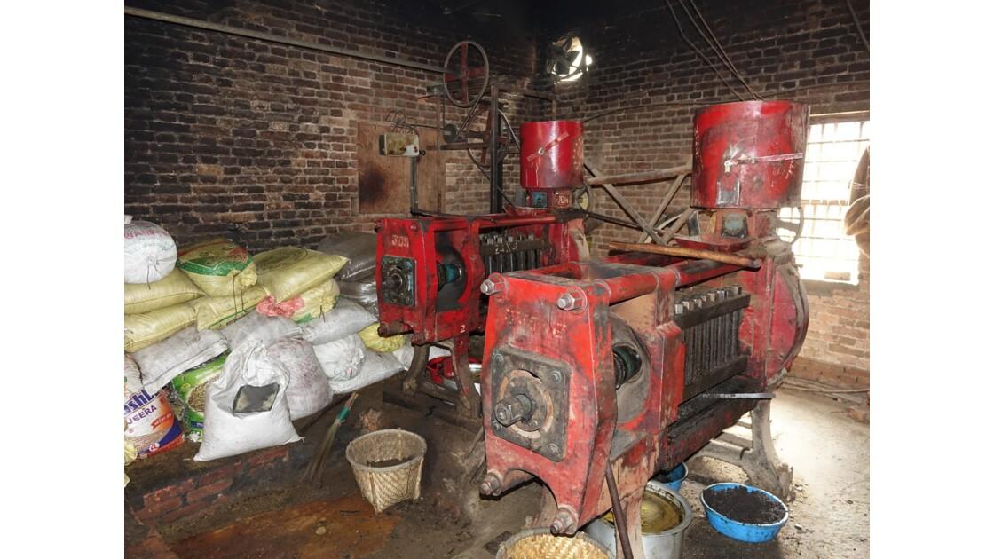 Népal Khokana Dernière fabrique d'huile de moutarde 2