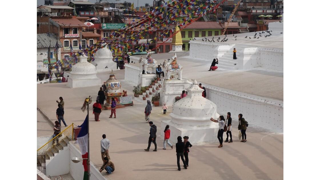 Népal Stupa de Bodnath les éléphants 2