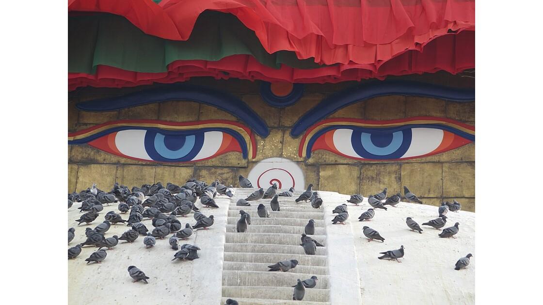 Népal Le Stupa de Bodnath les yeux de Bouddha 1